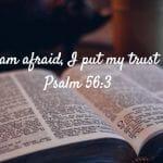 Psalm_56_3
