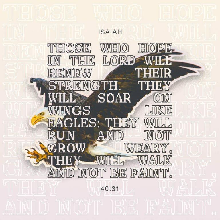widows faith or fear isaiah 40 31